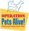 German Shepherd Dog Puppy for adoption in Spring, Texas - Mork