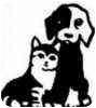 Shepherd (Unknown Type) Mix Dog for adoption in Canoga Park, California - Princess