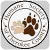 Labrador Retriever Mix Dog for adoption in Tahlequah, Oklahoma - Ursa