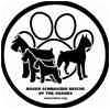 Boxer Mix Dog for adoption in Springfield, Missouri - Peyton
