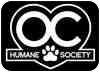 Domestic Shorthair/Domestic Shorthair Mix Cat for adoption in Huntington Beach, California - KITTY