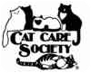 Domestic Shorthair Cat for adoption in Lakewood, Colorado - Mitts