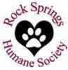 Shih Tzu Mix Dog for adoption in Rock Springs, Wyoming - Wookie