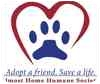 Domestic Shorthair/Domestic Shorthair Mix Cat for adoption in Lafayette, Indiana - Feral 47